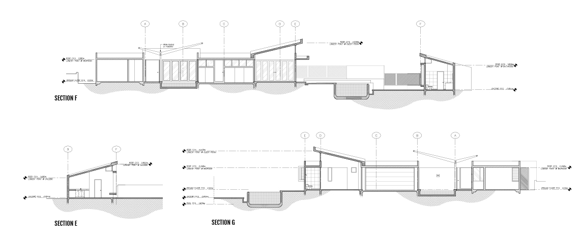 Rojas Berrios Residence sections